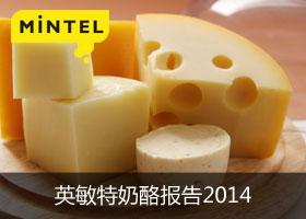 英敏特奶酪报告2014