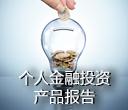 个人金融投资产品报告2015