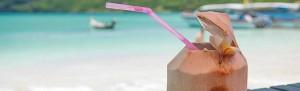 coconut_drinks