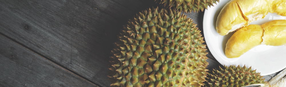 Global-durian-blog